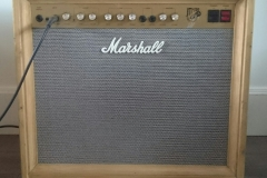 Custom Marshall amp casing